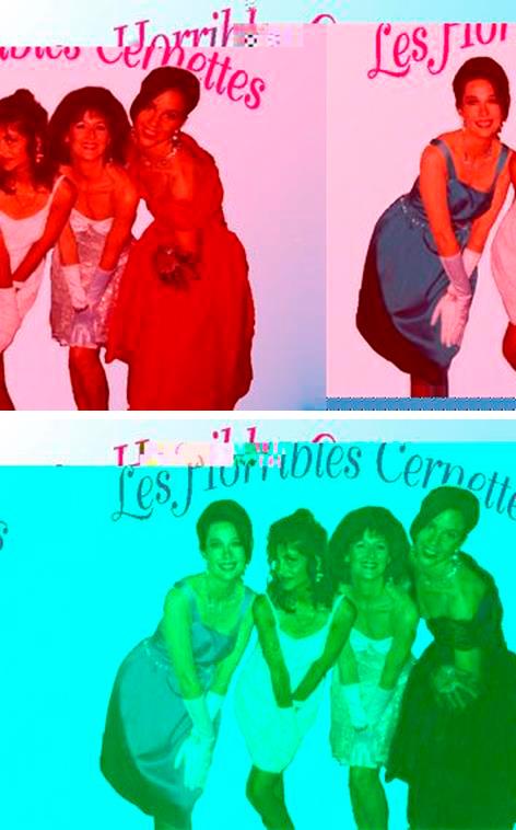 Fotos distorsionades de Les Horribles Cernettes